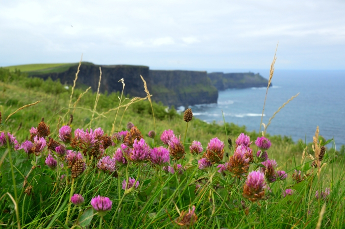Guest Post: Cliffs of Moher, County Clare