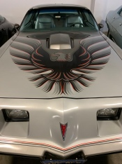 Not a fan of this car or the hood art but I would venture to guess some folks might disagree with me