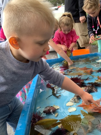 They had a small tide pool for the tots to touch and experience.
